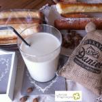 Horchata de Chufa Valenciana con Thermomix